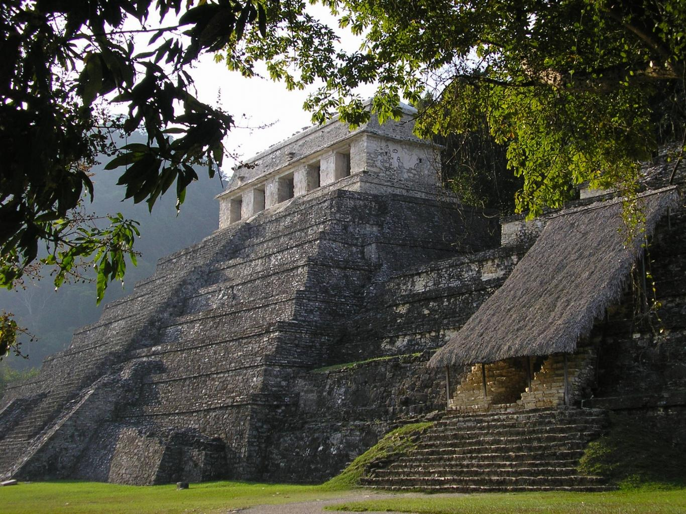 A morning shot in the jungle of Palenque of the Maya Temple of the Inscriptons and Temple of the Red Queen.jpeg