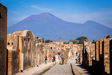 ruins-of-pompeii-and-mt-vesuvius-day-trip-from-rome-in-rome-690054