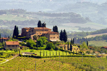 tuscany-in-one-day-sightseeing-tour-from-rome-in-rome-727191